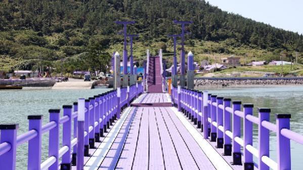 Güney Kore'de adalara turist çekmek sıra dışı yöntem: Her şey mora boyandı
