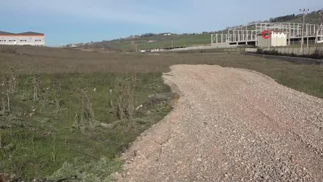 Sinop'u ekonomik olarak şahlandıracak projede çalışmalar başlıyor