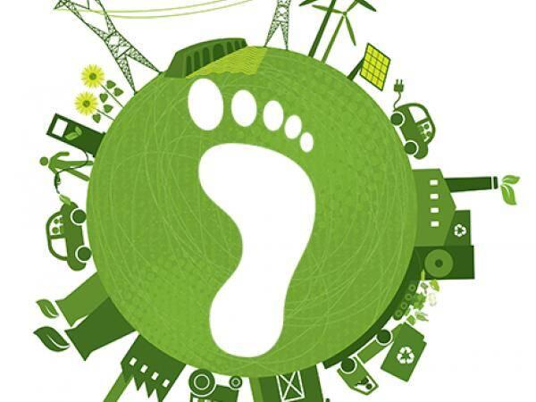Tüketici Özellikleri ve Karbon Ayak İzi Etiketlemesine Tepkileri